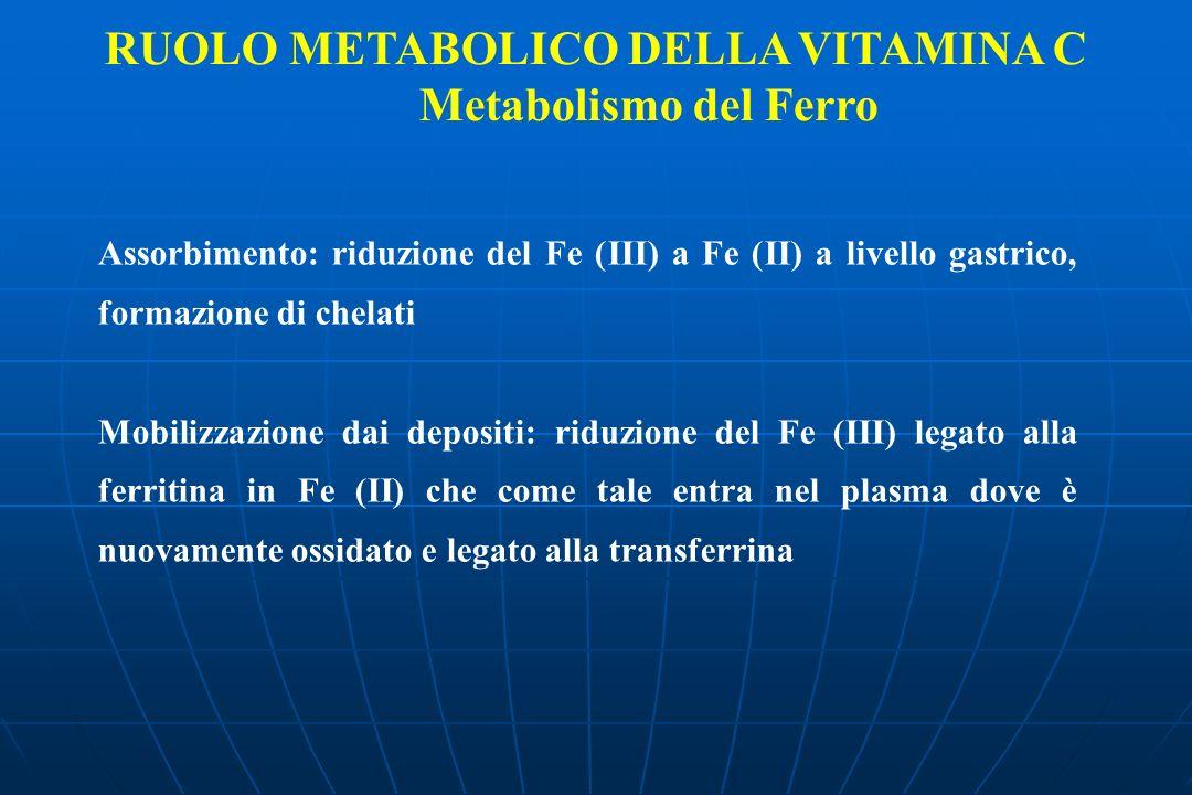 Metabolismo del Ferro Assorbimento: riduzione del Fe (III) a Fe (II) a livello gastrico, formazione di chelati Mobilizzazione dai depositi: riduzione