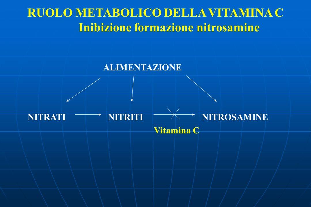 RUOLO METABOLICO DELLA VITAMINA C Inibizione formazione nitrosamine ALIMENTAZIONE NITRATI NITRITI NITROSAMINE Vitamina C