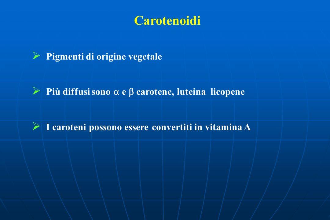 Carotenoidi Pigmenti di origine vegetale Più diffusi sono e carotene, luteina licopene I caroteni possono essere convertiti in vitamina A