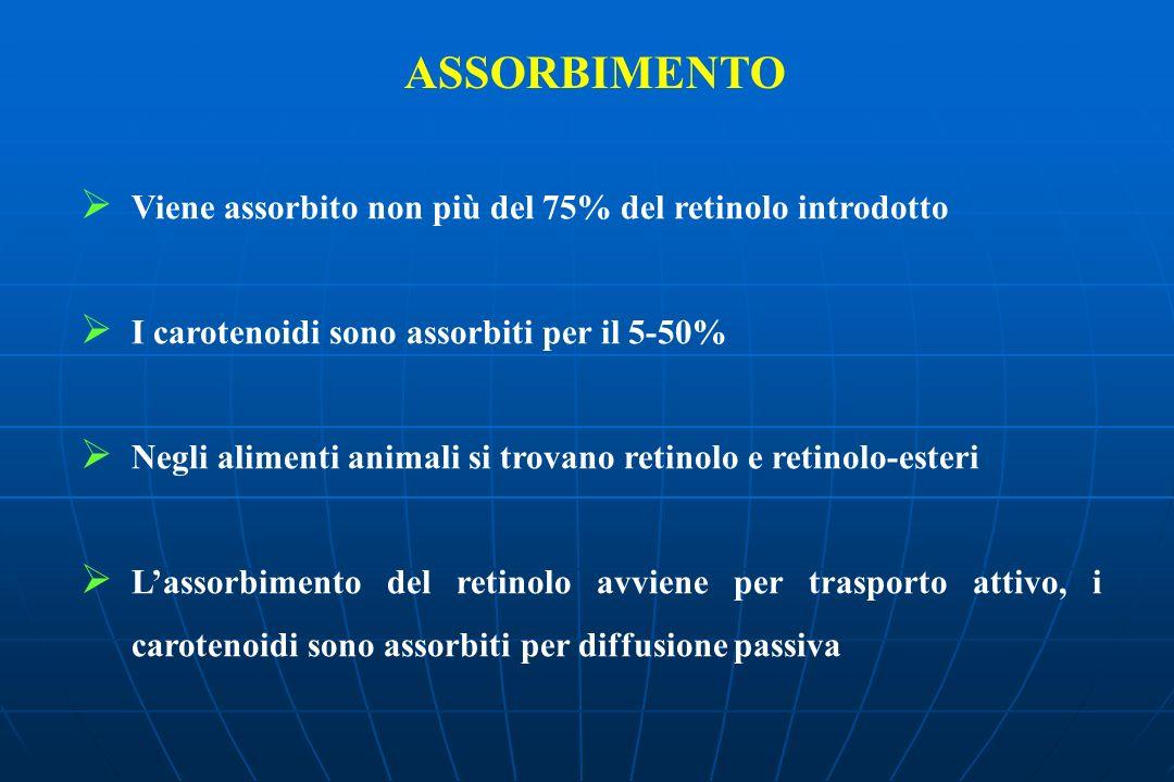 ASSORBIMENTO Viene assorbito non più del 75% del retinolo introdotto I carotenoidi sono assorbiti per il 5-50% Negli alimenti animali si trovano retin
