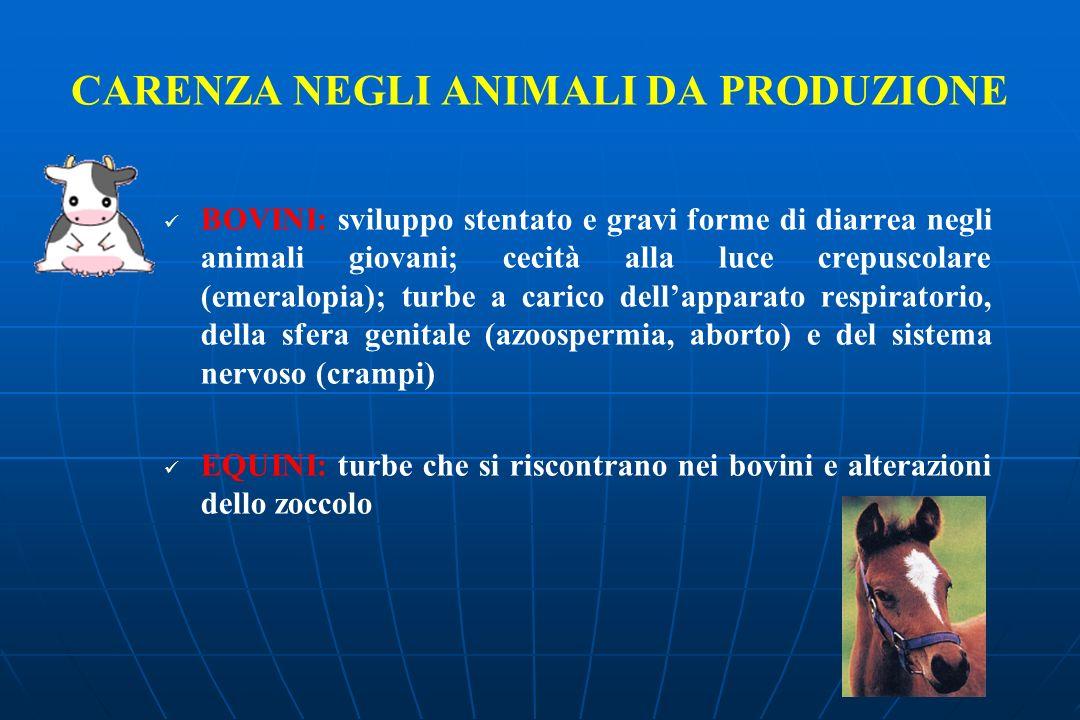 CARENZA NEGLI ANIMALI DA PRODUZIONE BOVINI: sviluppo stentato e gravi forme di diarrea negli animali giovani; cecità alla luce crepuscolare (emeralopi