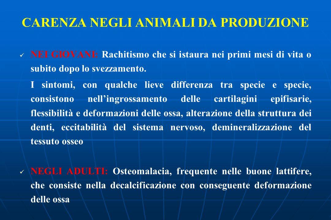 CARENZA NEGLI ANIMALI DA PRODUZIONE NEI GIOVANI: Rachitismo che si istaura nei primi mesi di vita o subito dopo lo svezzamento.