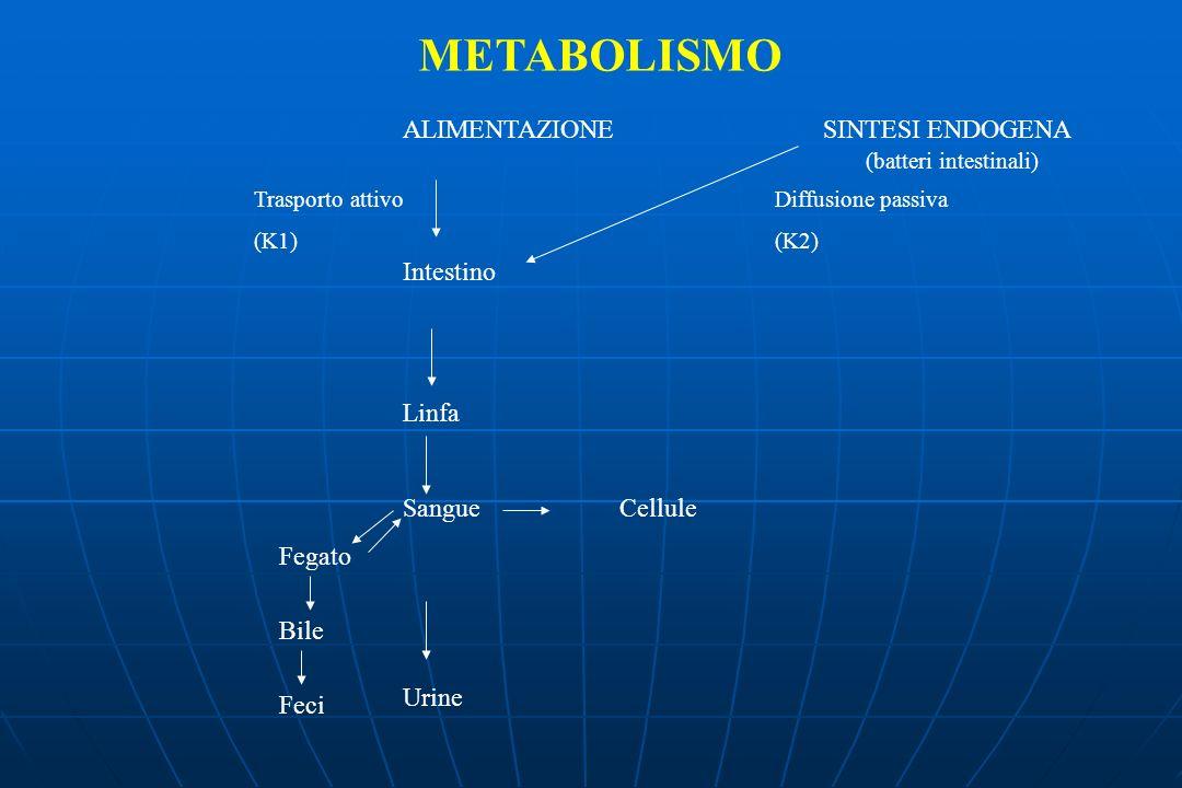 METABOLISMO ALIMENTAZIONE SINTESI ENDOGENA Intestino Linfa Sangue Cellule Urine Fegato Bile Feci Trasporto attivo (K1) Diffusione passiva (K2) (batteri intestinali)