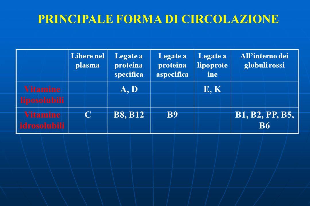 PRINCIPALE FORMA DI CIRCOLAZIONE Libere nel plasma Legate a proteina specifica Legate a proteina aspecifica Legate a lipoprote ine Allinterno dei glob
