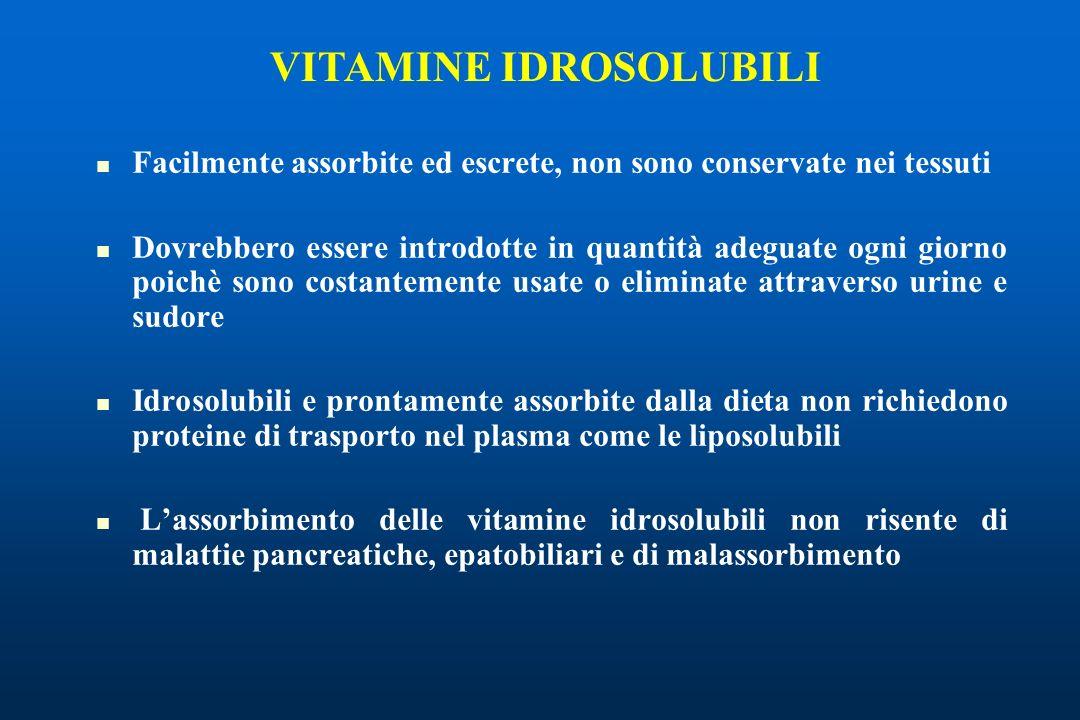 Facilmente assorbite ed escrete, non sono conservate nei tessuti Dovrebbero essere introdotte in quantità adeguate ogni giorno poichè sono costantemente usate o eliminate attraverso urine e sudore Idrosolubili e prontamente assorbite dalla dieta non richiedono proteine di trasporto nel plasma come le liposolubili Lassorbimento delle vitamine idrosolubili non risente di malattie pancreatiche, epatobiliari e di malassorbimento VITAMINE IDROSOLUBILI