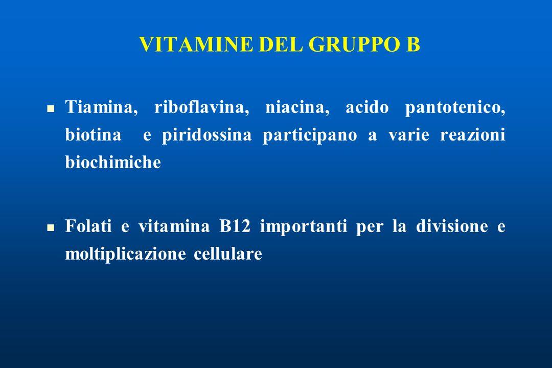 Tiamina, riboflavina, niacina, acido pantotenico, biotina e piridossina participano a varie reazioni biochimiche Folati e vitamina B12 importanti per la divisione e moltiplicazione cellulare VITAMINE DEL GRUPPO B