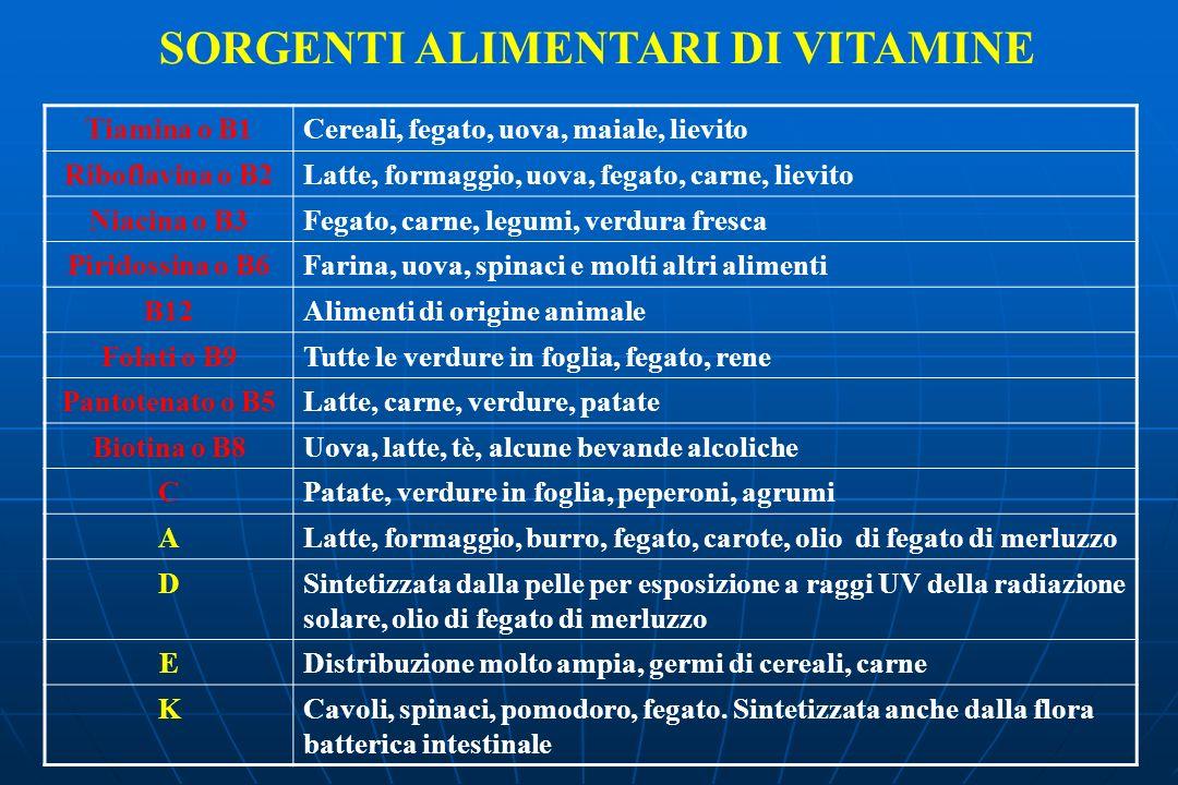 SORGENTI ALIMENTARI DI VITAMINE Tiamina o B1Cereali, fegato, uova, maiale, lievito Riboflavina o B2Latte, formaggio, uova, fegato, carne, lievito Niacina o B3Fegato, carne, legumi, verdura fresca Piridossina o B6Farina, uova, spinaci e molti altri alimenti B12Alimenti di origine animale Folati o B9Tutte le verdure in foglia, fegato, rene Pantotenato o B5Latte, carne, verdure, patate Biotina o B8Uova, latte, tè, alcune bevande alcoliche CPatate, verdure in foglia, peperoni, agrumi ALatte, formaggio, burro, fegato, carote, olio di fegato di merluzzo DSintetizzata dalla pelle per esposizione a raggi UV della radiazione solare, olio di fegato di merluzzo EDistribuzione molto ampia, germi di cereali, carne KCavoli, spinaci, pomodoro, fegato.
