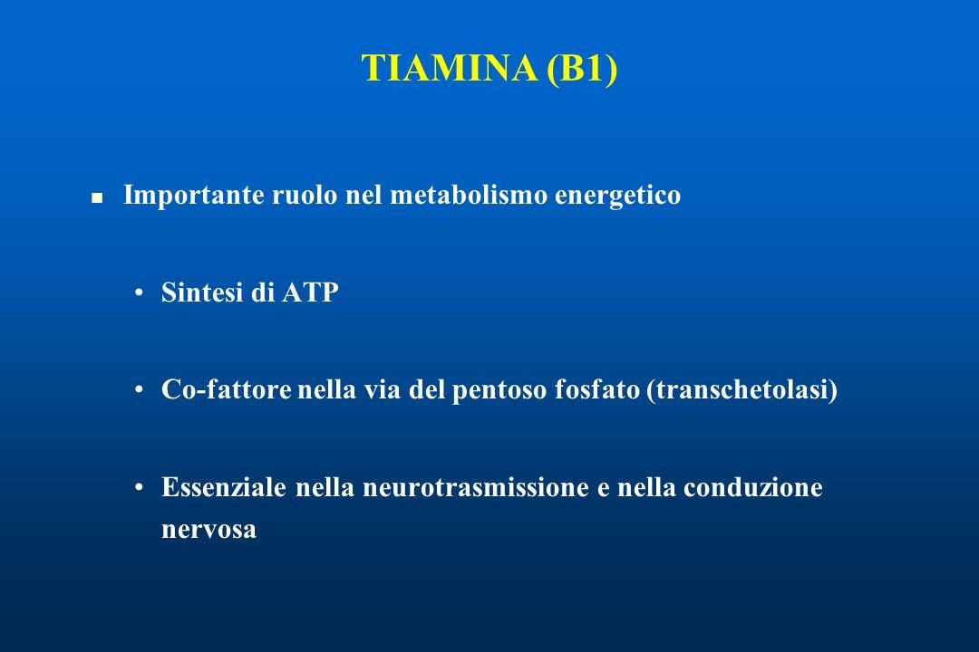 TIAMINA (B1) Importante ruolo nel metabolismo energetico Sintesi di ATP Co-fattore nella via del pentoso fosfato (transchetolasi) Essenziale nella neurotrasmissione e nella conduzione nervosa