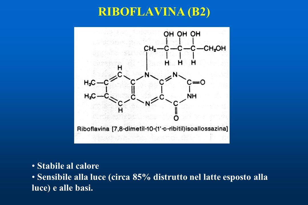 RIBOFLAVINA (B2) Stabile al calore Sensibile alla luce (circa 85% distrutto nel latte esposto alla luce) e alle basi.