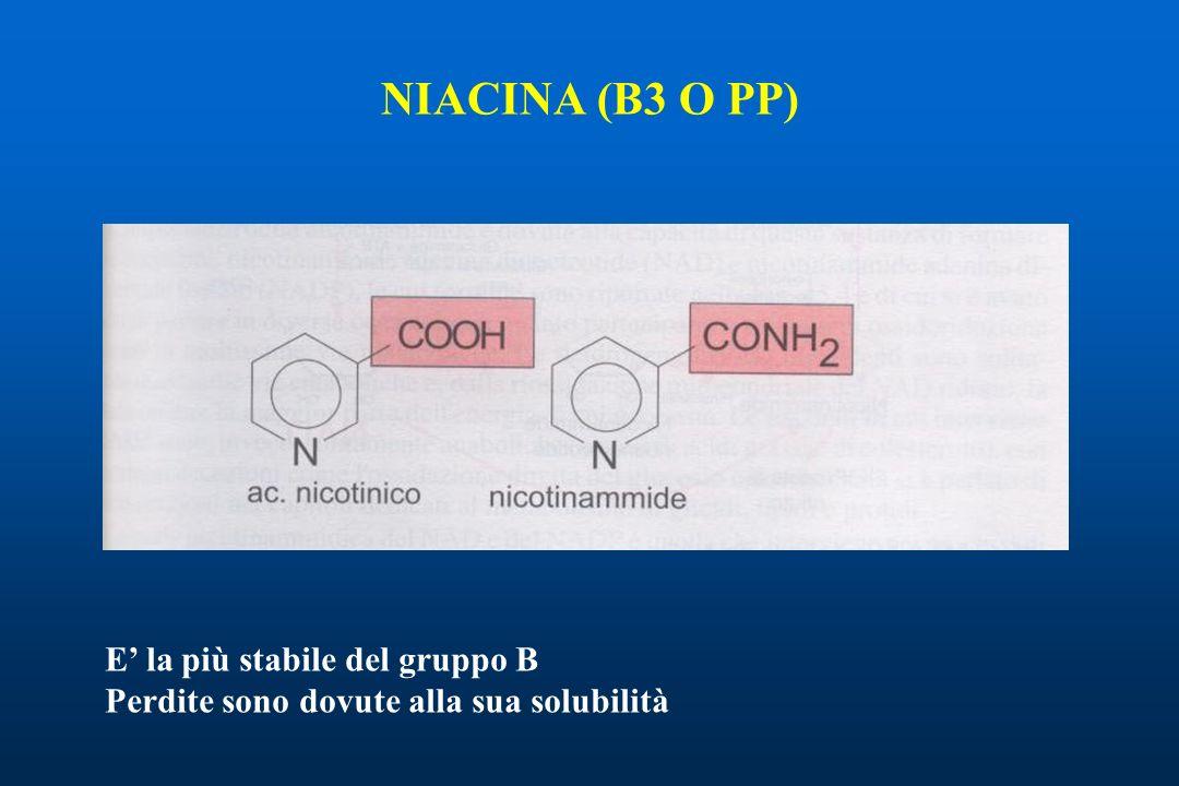 NIACINA (B3 O PP) E la più stabile del gruppo B Perdite sono dovute alla sua solubilità