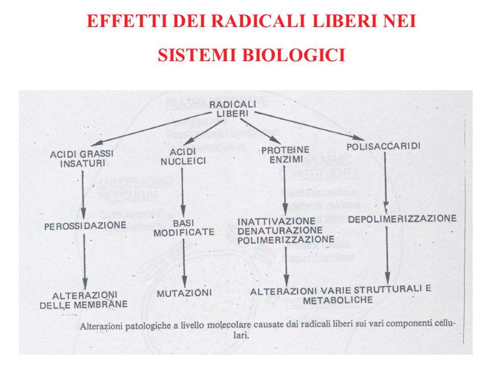 EFFETTI DEI RADICALI LIBERI NEI SISTEMI BIOLOGICI