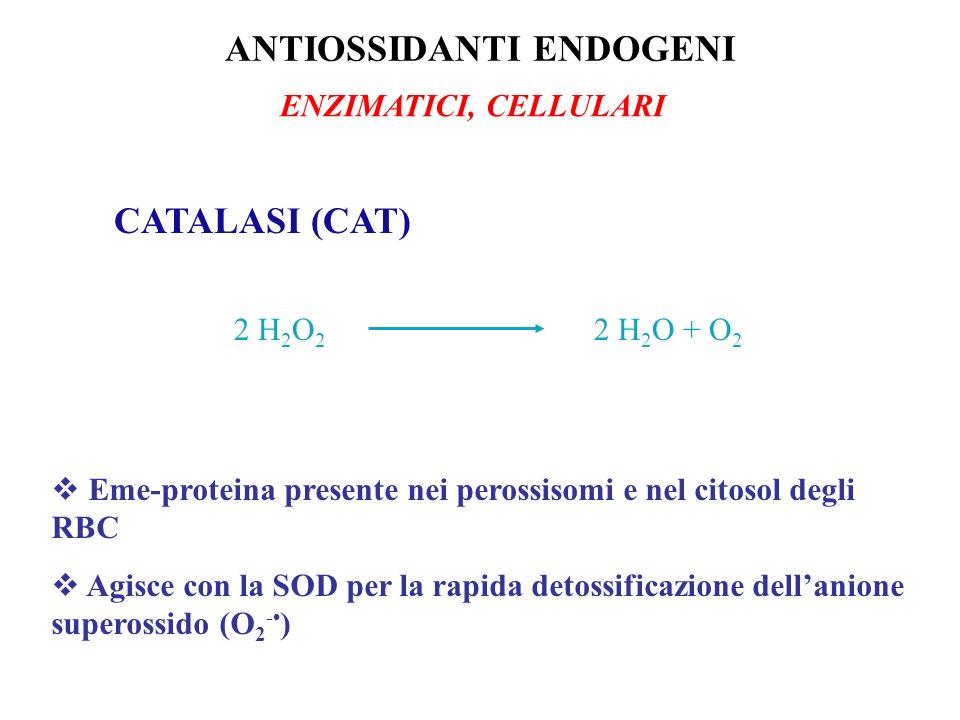 CATALASI (CAT) 2 H 2 O 2 2 H 2 O + O 2 Eme-proteina presente nei perossisomi e nel citosol degli RBC Agisce con la SOD per la rapida detossificazione