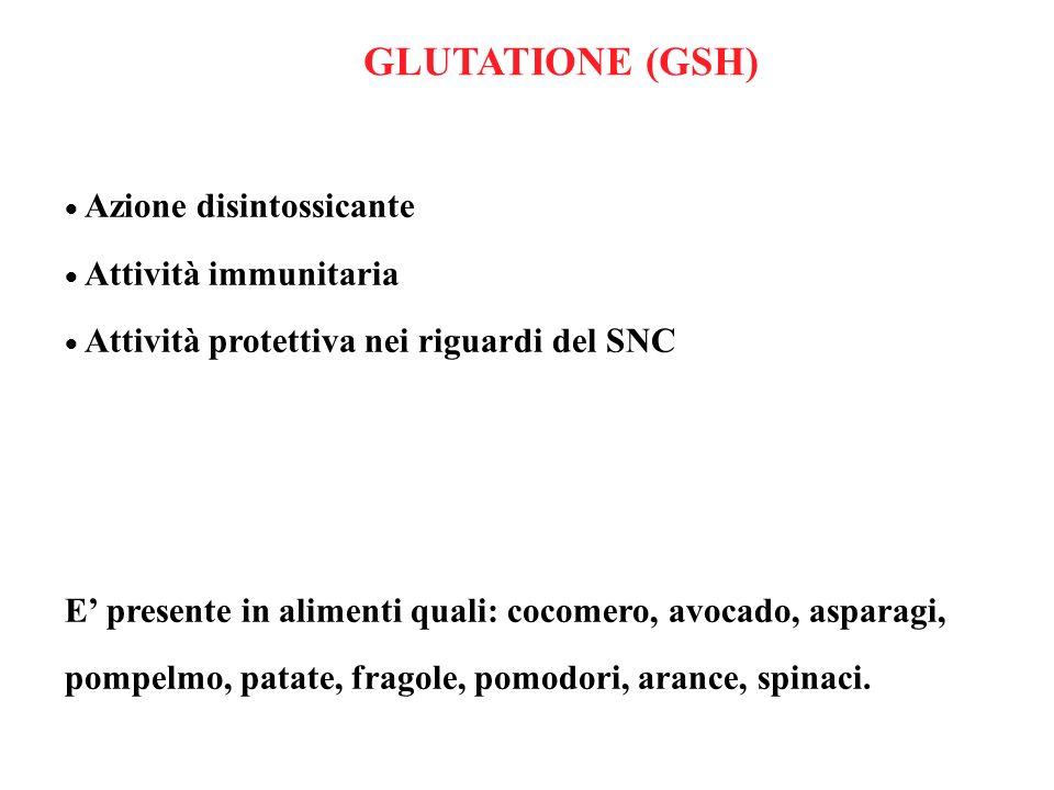 Azione disintossicante Attività immunitaria Attività protettiva nei riguardi del SNC E presente in alimenti quali: cocomero, avocado, asparagi, pompel