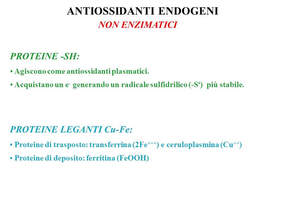 ANTIOSSIDANTI ENDOGENI NON ENZIMATICI PROTEINE -SH: Agiscono come antiossidanti plasmatici. Acquistano un e - generando un radicale sulfidrilico (-S )