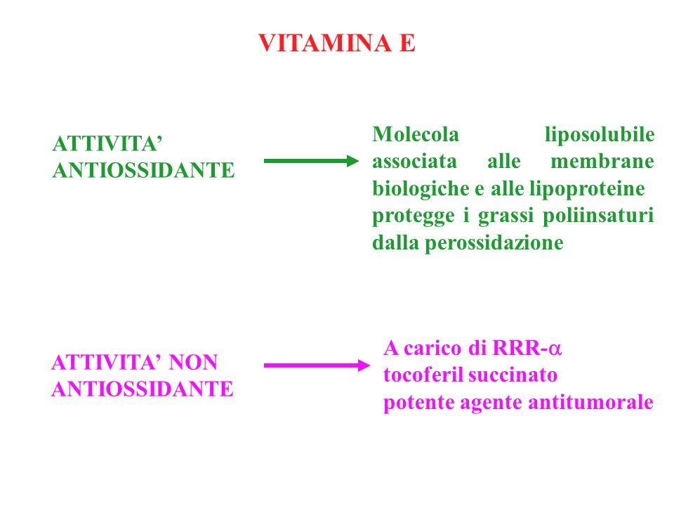 ATTIVITA ANTIOSSIDANTE Molecola liposolubile associata alle membrane biologiche e alle lipoproteine protegge i grassi poliinsaturi dalla perossidazion
