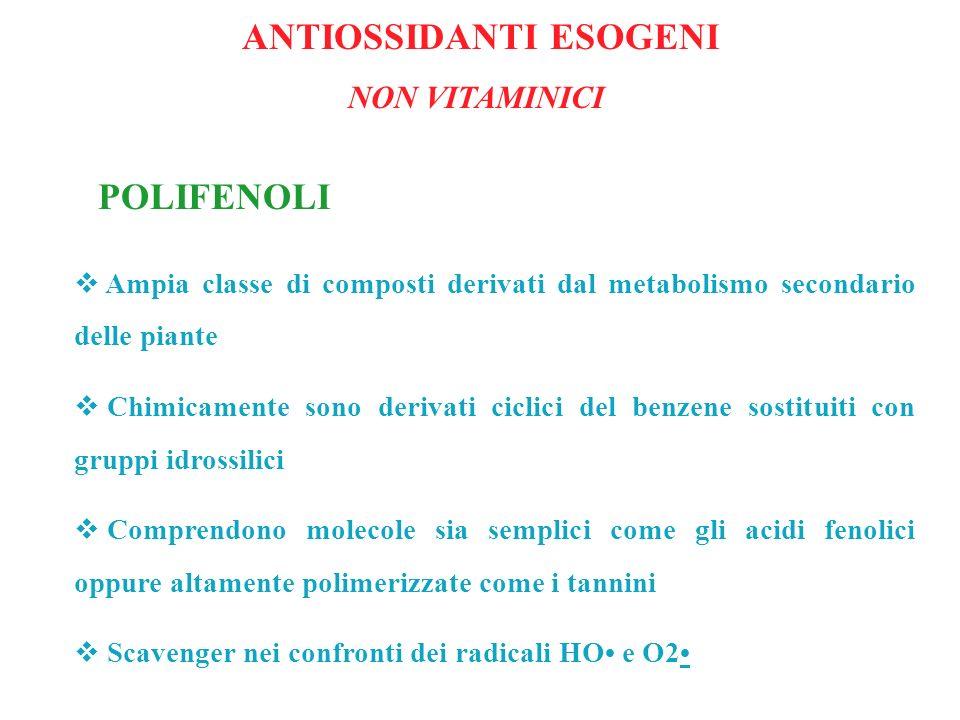 POLIFENOLI Ampia classe di composti derivati dal metabolismo secondario delle piante Chimicamente sono derivati ciclici del benzene sostituiti con gru
