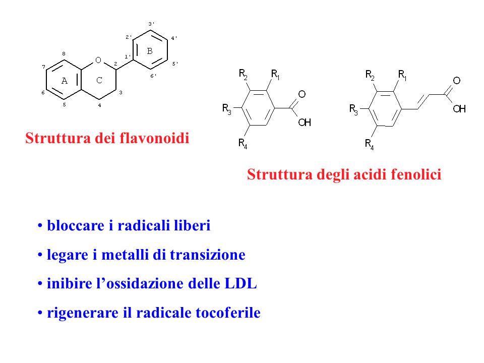 bloccare i radicali liberi legare i metalli di transizione inibire lossidazione delle LDL rigenerare il radicale tocoferile Struttura dei flavonoidi S