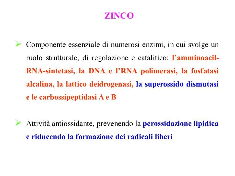 ZINCO Componente essenziale di numerosi enzimi, in cui svolge un ruolo strutturale, di regolazione e catalitico: lamminoacil- RNA-sintetasi, la DNA e