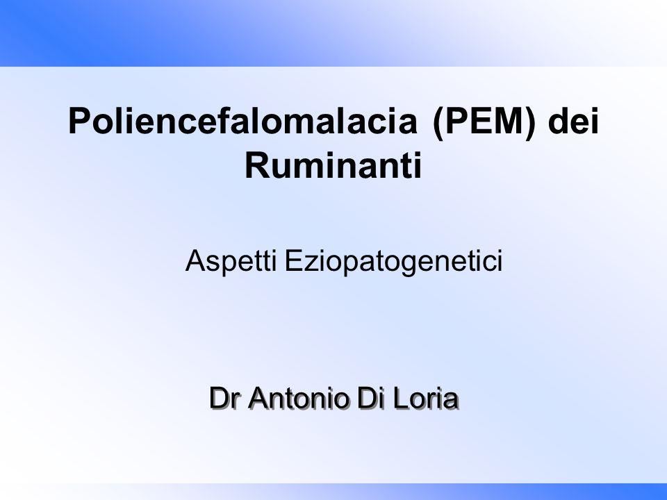 Dr Antonio Di Loria Poliencefalomalacia (PEM) dei Ruminanti Aspetti Eziopatogenetici