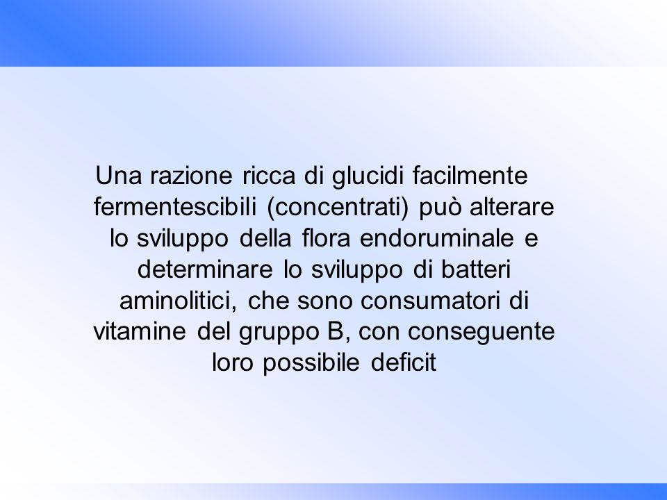 Una razione ricca di glucidi facilmente fermentescibili (concentrati) può alterare lo sviluppo della flora endoruminale e determinare lo sviluppo di b