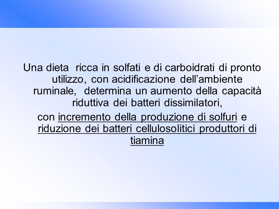 Una dieta ricca in solfati e di carboidrati di pronto utilizzo, con acidificazione dellambiente ruminale, determina un aumento della capacità riduttiv