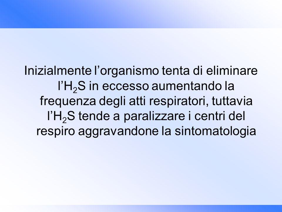 Inizialmente lorganismo tenta di eliminare lH 2 S in eccesso aumentando la frequenza degli atti respiratori, tuttavia lH 2 S tende a paralizzare i cen