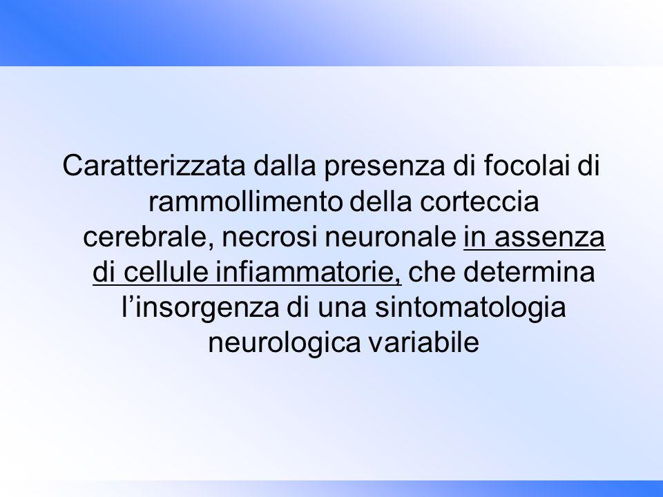 Caratterizzata dalla presenza di focolai di rammollimento della corteccia cerebrale, necrosi neuronale in assenza di cellule infiammatorie, che determ