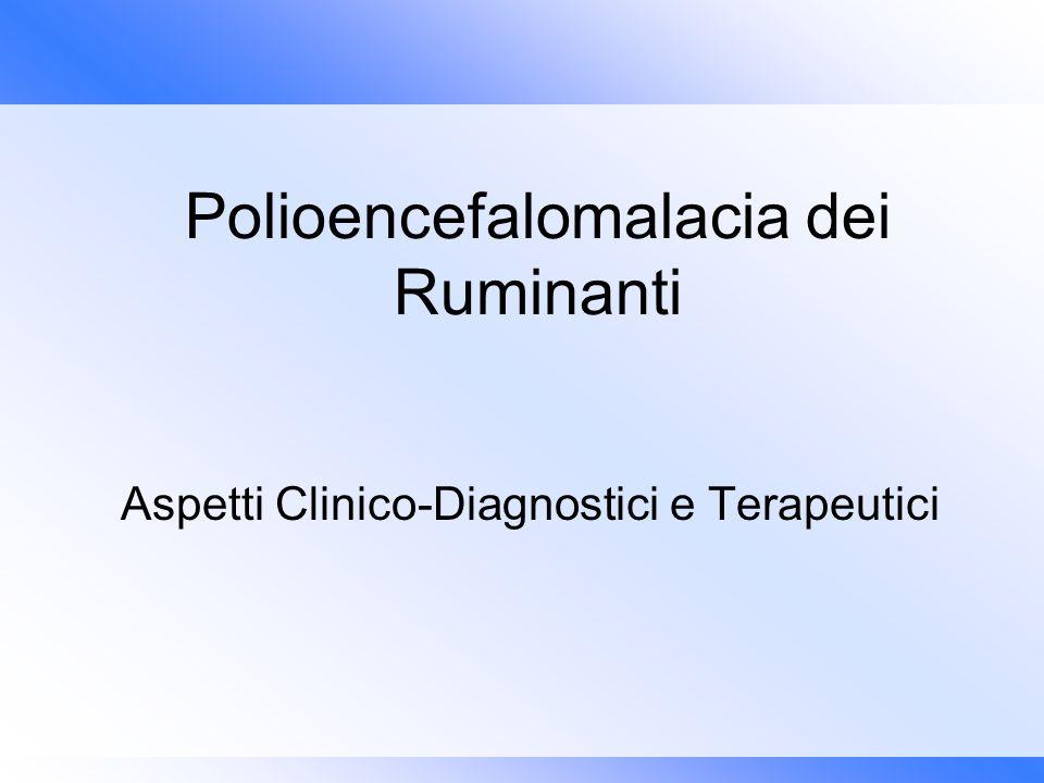 Polioencefalomalacia dei Ruminanti Aspetti Clinico-Diagnostici e Terapeutici
