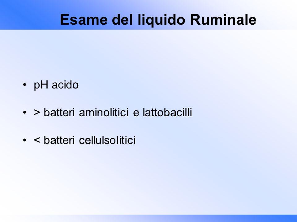 Esame del liquido Ruminale pH acido > batteri aminolitici e lattobacilli < batteri cellulsolitici