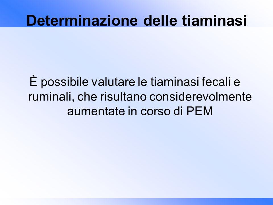Determinazione delle tiaminasi È possibile valutare le tiaminasi fecali e ruminali, che risultano considerevolmente aumentate in corso di PEM