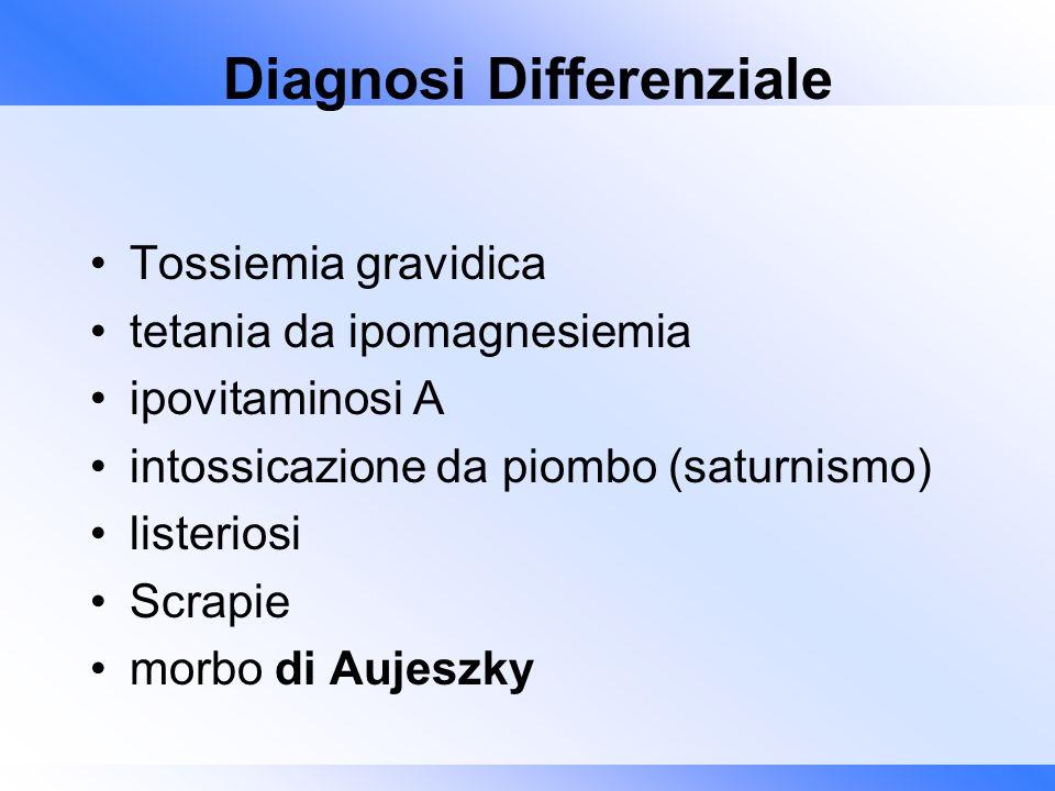 Diagnosi Differenziale Tossiemia gravidica tetania da ipomagnesiemia ipovitaminosi A intossicazione da piombo (saturnismo) listeriosi Scrapie morbo di