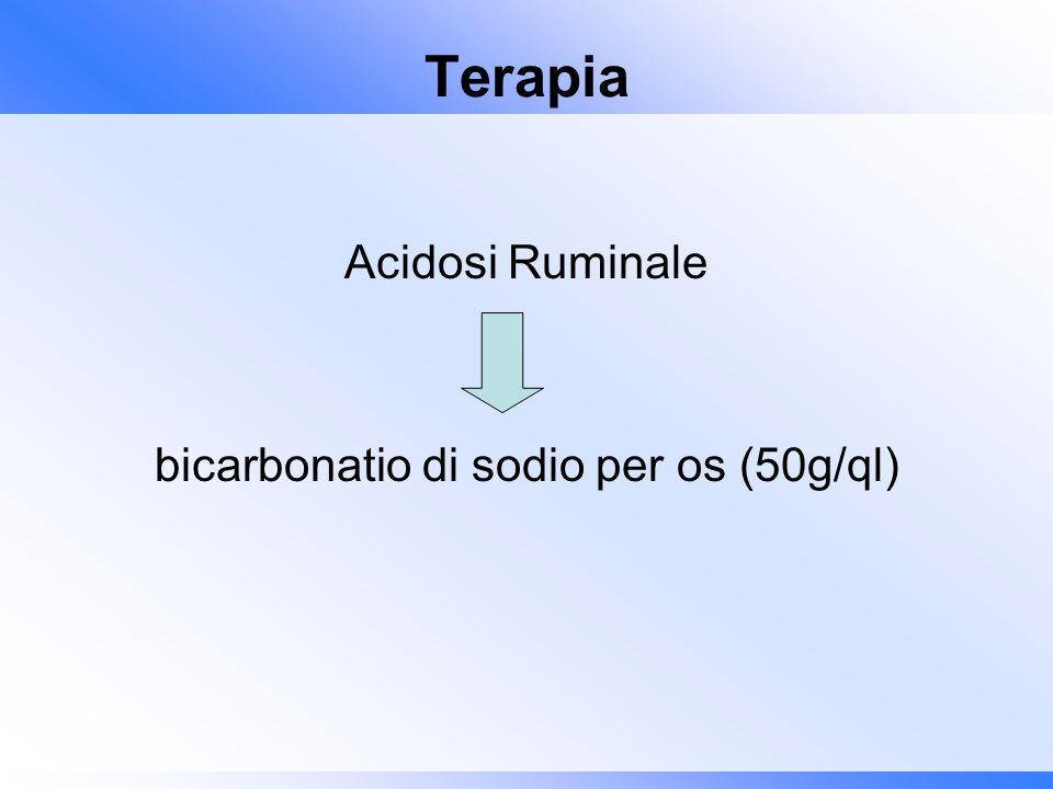 Terapia Acidosi Ruminale bicarbonatio di sodio per os (50g/ql)