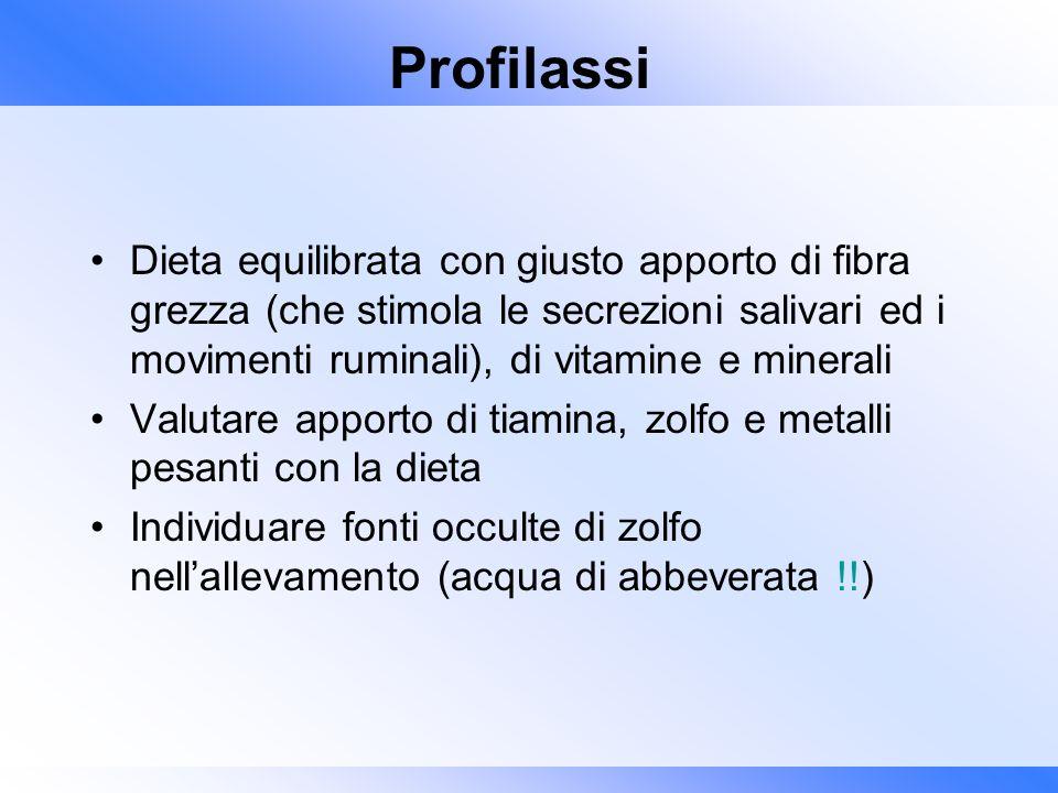 Profilassi Dieta equilibrata con giusto apporto di fibra grezza (che stimola le secrezioni salivari ed i movimenti ruminali), di vitamine e minerali V