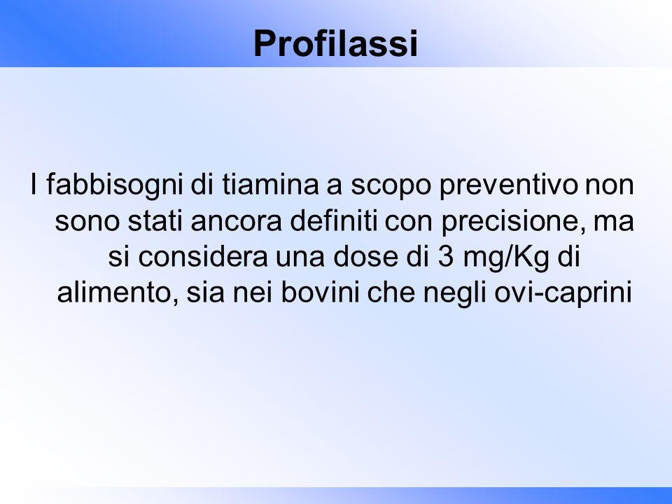 Profilassi I fabbisogni di tiamina a scopo preventivo non sono stati ancora definiti con precisione, ma si considera una dose di 3 mg/Kg di alimento,