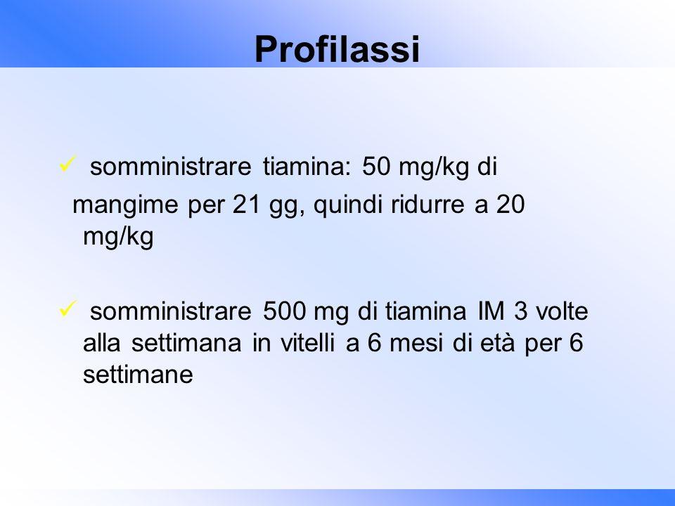 Profilassi somministrare tiamina: 50 mg/kg di mangime per 21 gg, quindi ridurre a 20 mg/kg somministrare 500 mg di tiamina IM 3 volte alla settimana i