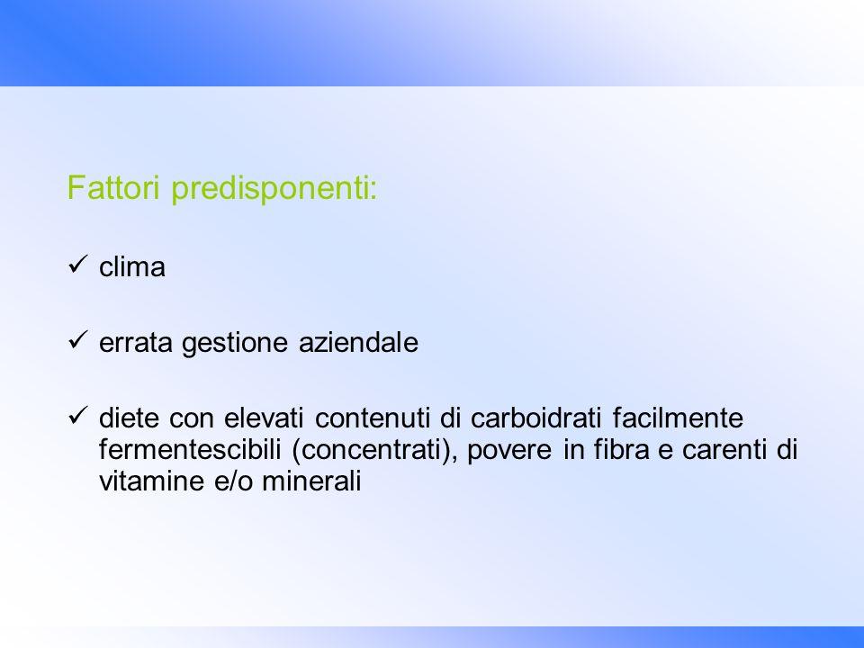Fattori predisponenti: clima errata gestione aziendale diete con elevati contenuti di carboidrati facilmente fermentescibili (concentrati), povere in
