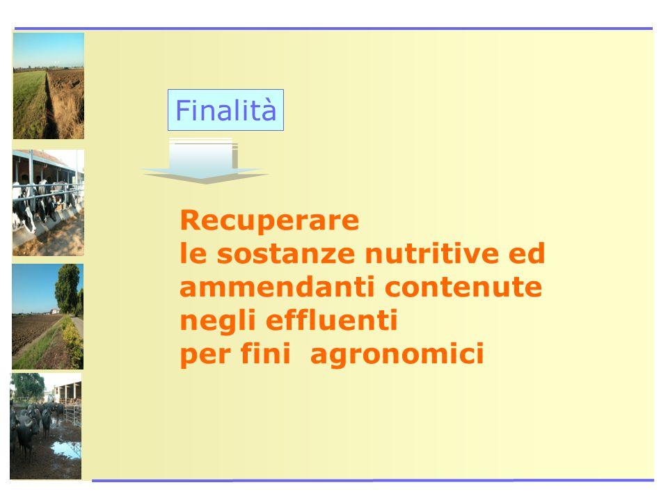 Finalità Recuperare le sostanze nutritive ed ammendanti contenute negli effluenti per fini agronomici