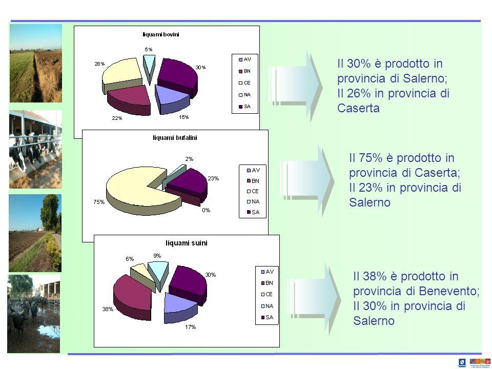 Il 30% è prodotto in provincia di Salerno; Il 26% in provincia di Caserta Il 75% è prodotto in provincia di Caserta; Il 23% in provincia di Salerno Il