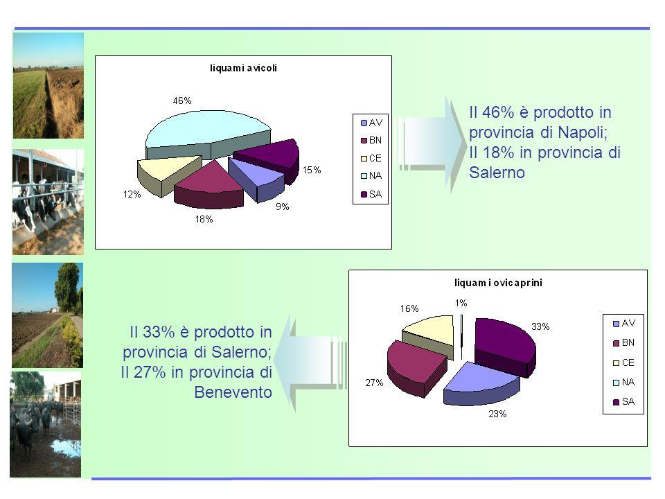 Il 46% è prodotto in provincia di Napoli; Il 18% in provincia di Salerno Il 33% è prodotto in provincia di Salerno; Il 27% in provincia di Benevento