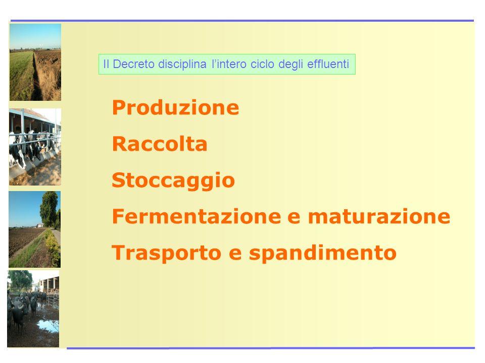 Il Decreto disciplina lintero ciclo degli effluenti Produzione Raccolta Stoccaggio Fermentazione e maturazione Trasporto e spandimento