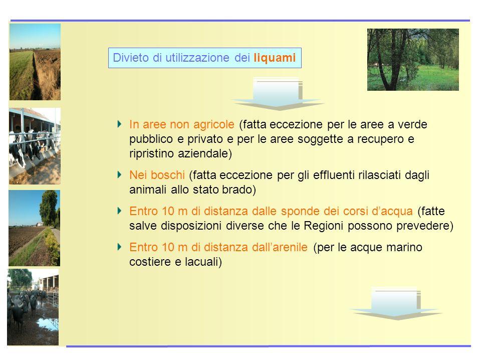 In aree non agricole (fatta eccezione per le aree a verde pubblico e privato e per le aree soggette a recupero e ripristino aziendale) Nei boschi (fat