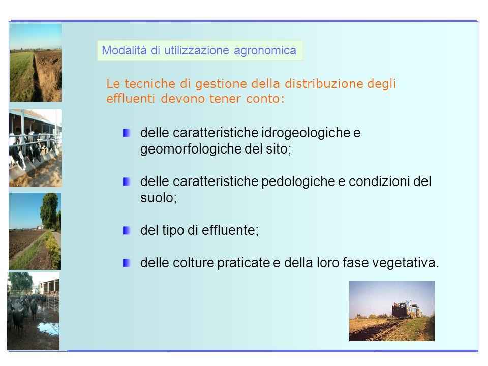 Modalità di utilizzazione agronomica Le tecniche di gestione della distribuzione degli effluenti devono tener conto: delle caratteristiche idrogeologi