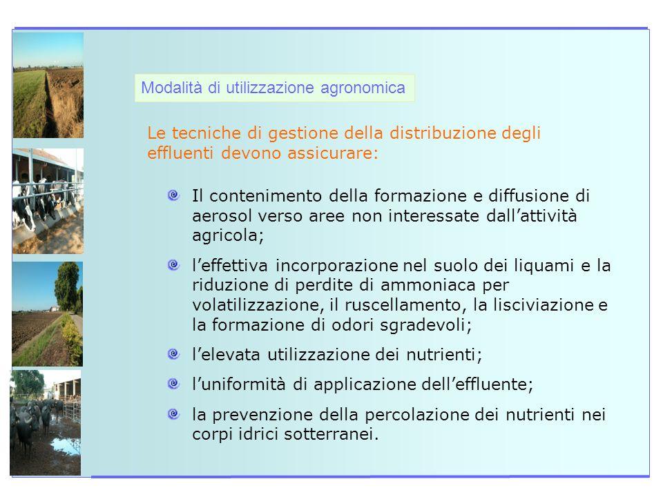 Modalità di utilizzazione agronomica Le tecniche di gestione della distribuzione degli effluenti devono assicurare: Il contenimento della formazione e