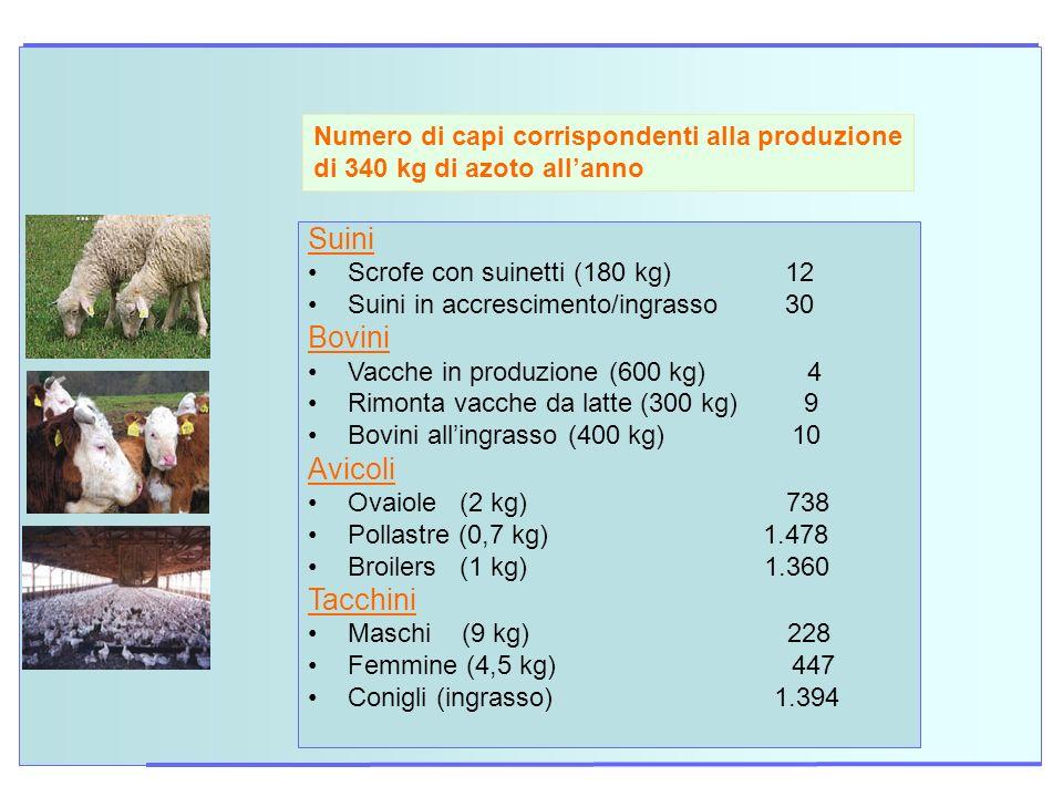 Numero di capi corrispondenti alla produzione di 340 kg di azoto allanno Suini Scrofe con suinetti (180 kg) 12 Suini in accrescimento/ingrasso 30 Bovi