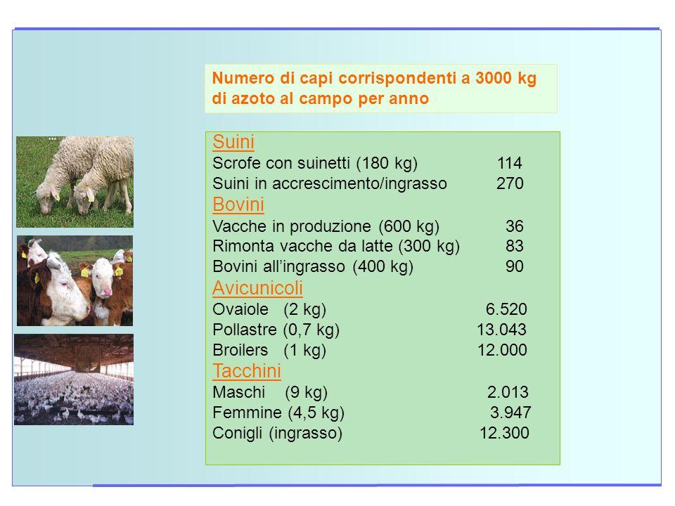 Numero di capi corrispondenti a 3000 kg di azoto al campo per anno Suini Scrofe con suinetti (180 kg) 114 Suini in accrescimento/ingrasso 270 Bovini V