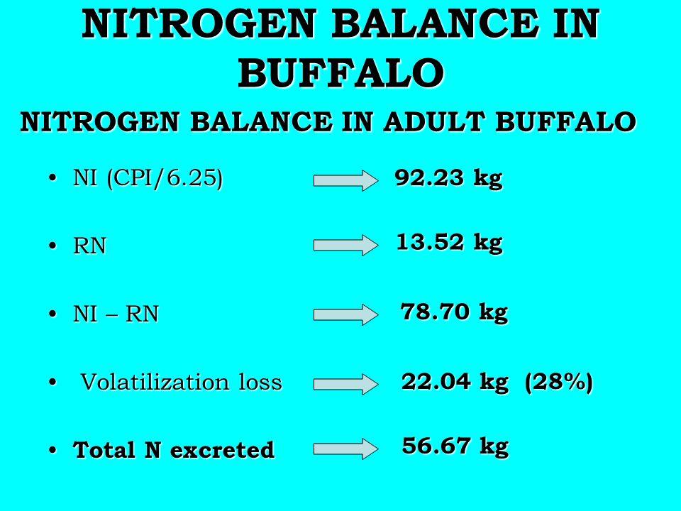 NITROGEN BALANCE IN BUFFALO NITROGEN BALANCE IN ADULT BUFFALO NITROGEN BALANCE IN ADULT BUFFALO NI (CPI/6.25)NI (CPI/6.25) RNRN NI – RNNI – RN Volatil