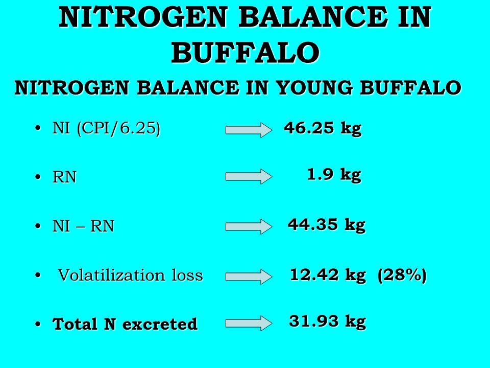 NITROGEN BALANCE IN BUFFALO NITROGEN BALANCE IN YOUNG BUFFALO NITROGEN BALANCE IN YOUNG BUFFALO NI (CPI/6.25)NI (CPI/6.25) RNRN NI – RNNI – RN Volatil