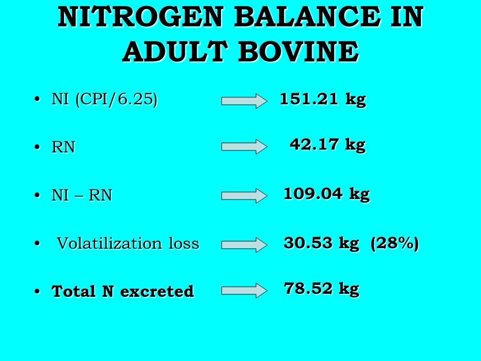 NITROGEN BALANCE IN ADULT BOVINE NI (CPI/6.25)NI (CPI/6.25) RNRN NI – RNNI – RN Volatilization loss Volatilization loss Total N excreted Total N excre