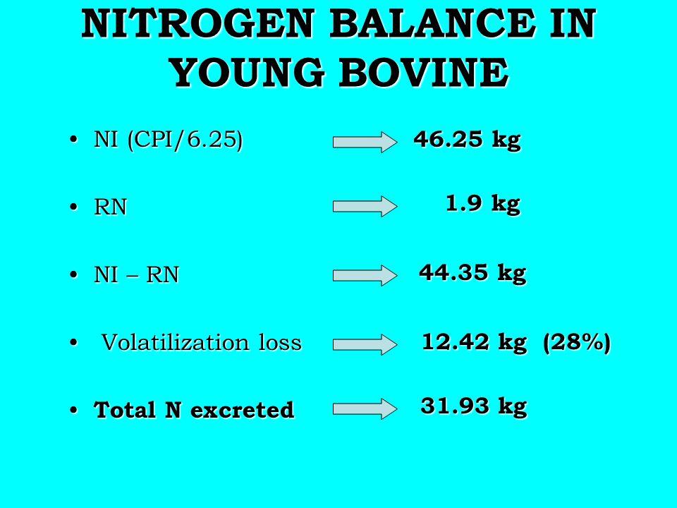 NITROGEN BALANCE IN YOUNG BOVINE NI (CPI/6.25)NI (CPI/6.25) RNRN NI – RNNI – RN Volatilization loss Volatilization loss Total N excreted Total N excre