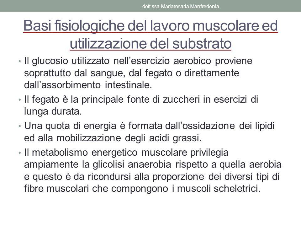 Basi fisiologiche del lavoro muscolare ed utilizzazione del substrato Il glucosio utilizzato nellesercizio aerobico proviene soprattutto dal sangue, d